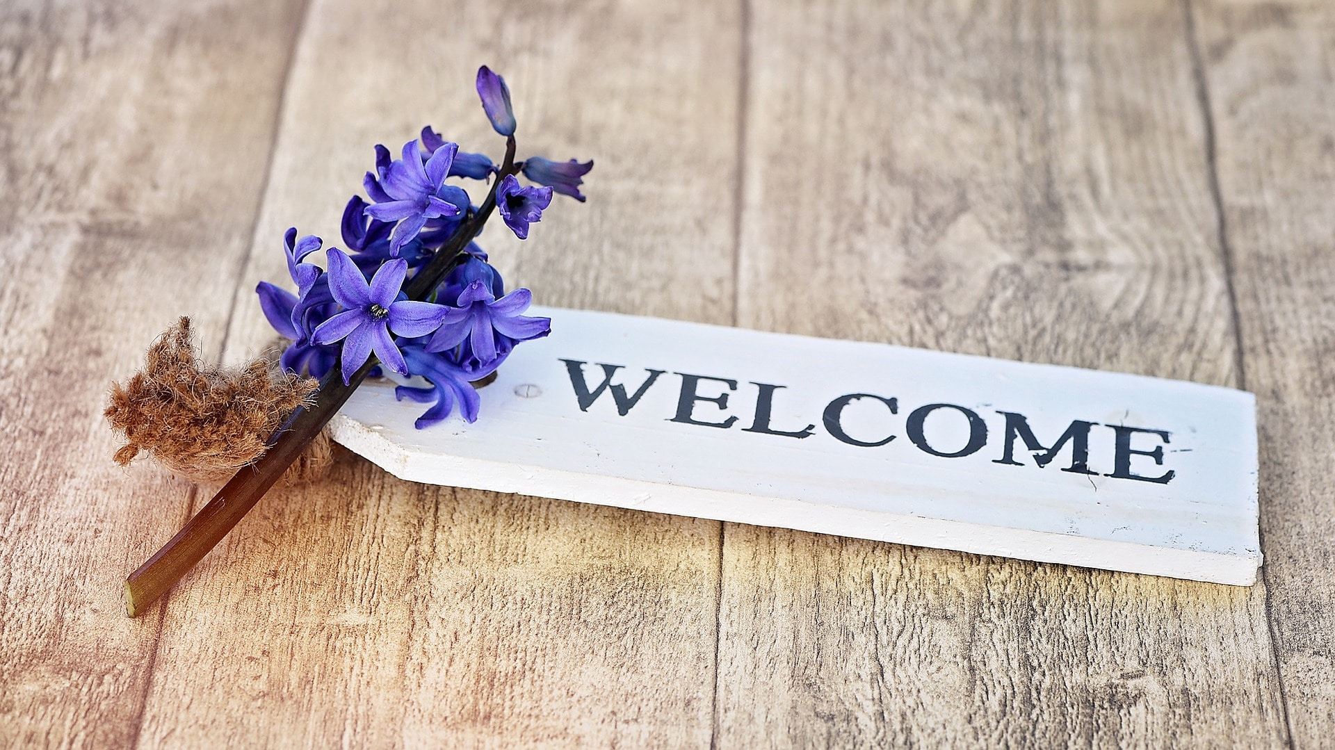 welcome packet for new clients