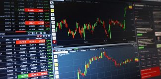 stock investment opportunities beginners