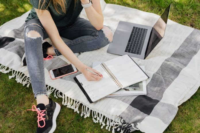 starting an essay writing business