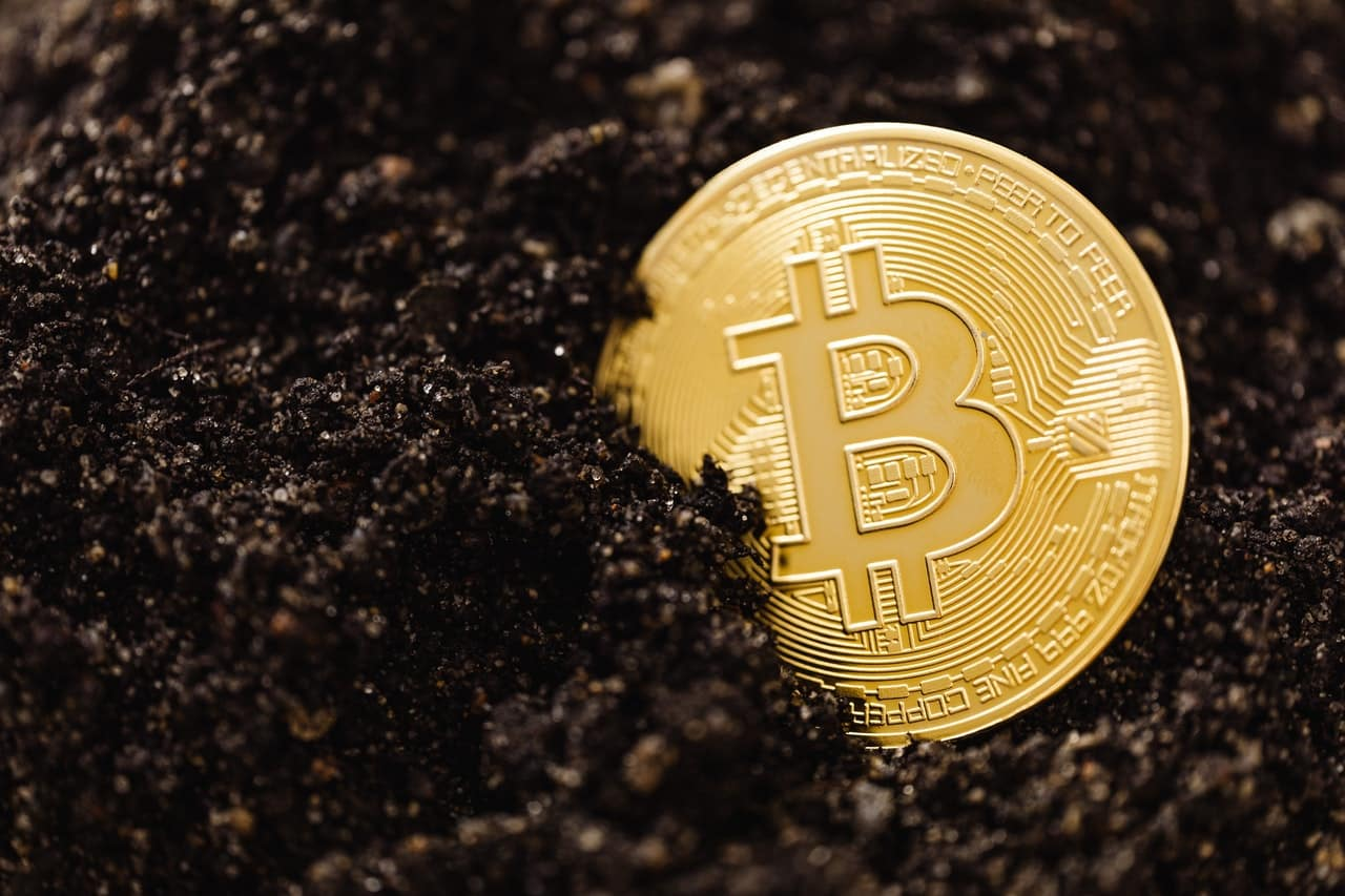 bitcoin investment firm